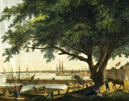 The City and Port of Philadelphia on the River Delaware